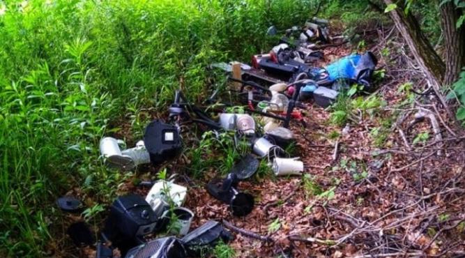 Śmieci w lesie fot. archiwum Lasy Państwowe